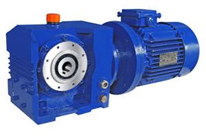 Heliworm geared motors heliworm geared motors for Hollow shaft worm gear motor