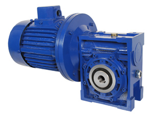 Worm gear motor worm gear motor manufacturer supplier Gearbox motors
